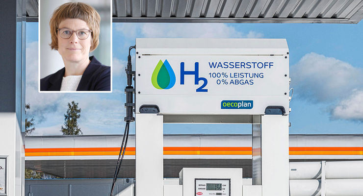 Wirtschaftsweise setzt auf Wasserstoff