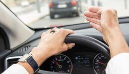 Wespen können im Auto lästig und gefährlich werden